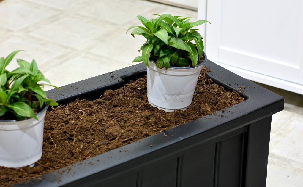 black window box with dirt inside and plant in white pot sitting on top