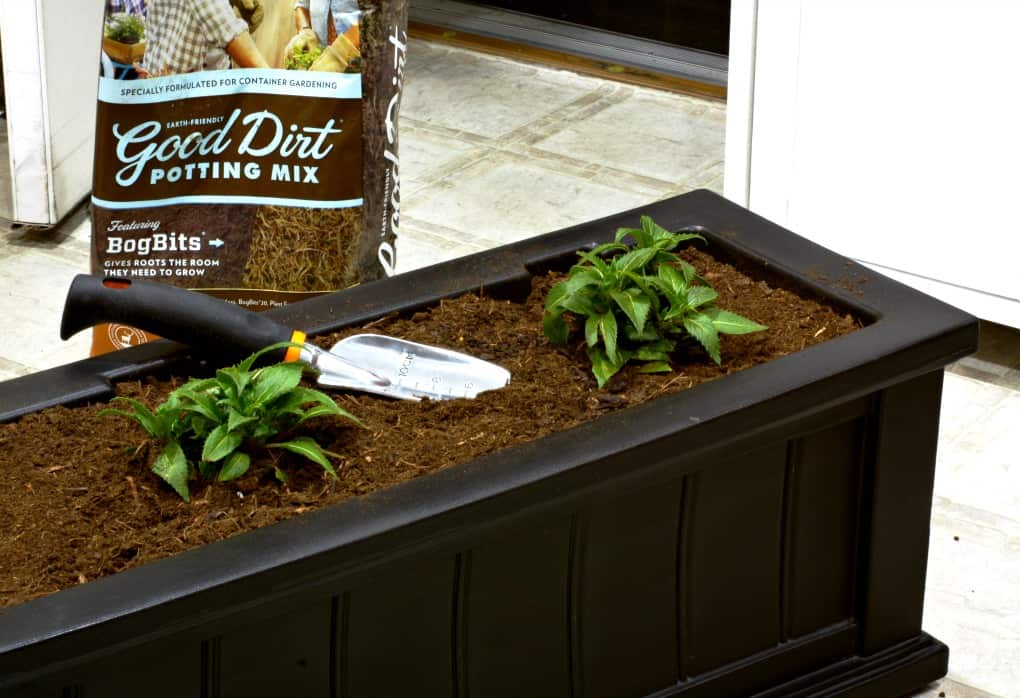 black window box with dirt inside and plants in in dirt with shovel