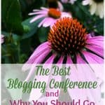purple and orange flower with title the best bloggin conference and why you should go