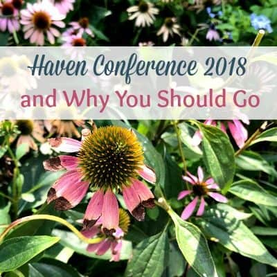flower bed with title haven conference 2018 and why you should go