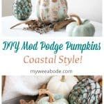 diy mod podge pumpkins coastal style pumpkins with coastal pattern and leaves and stem on tray with starfish and blanket in background