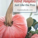 diy velvet pumpkins just like the pros velvet pumpkins in coral aqua and natural in a tobacco basket with leaves flowers and natural elements on top of a white surface with a white window pane in the background