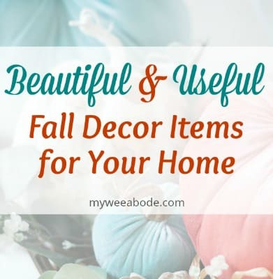 beautiful and useful fall decor items for your home with pumpkins in the background