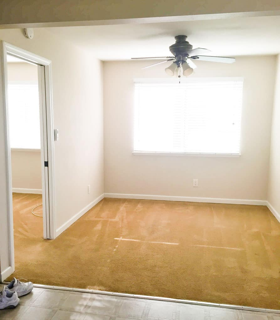 how to cover ugly carpet empty room with gold carpet and large window
