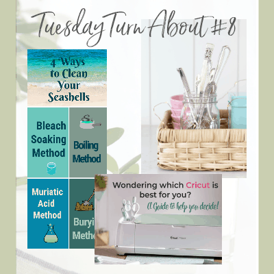 Tuesday Turn About #8 – Summer Guides