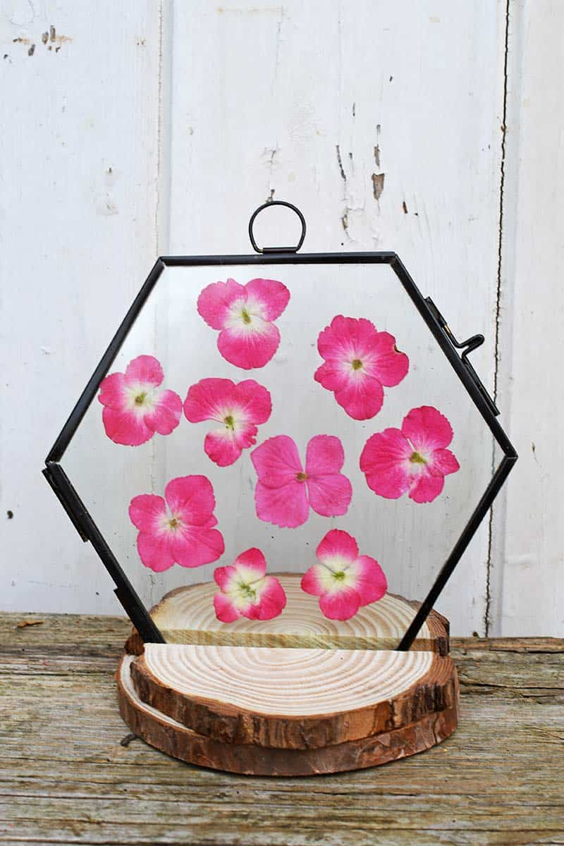tuesday turn about 13 summer diy projects octagon frame in wooden stand