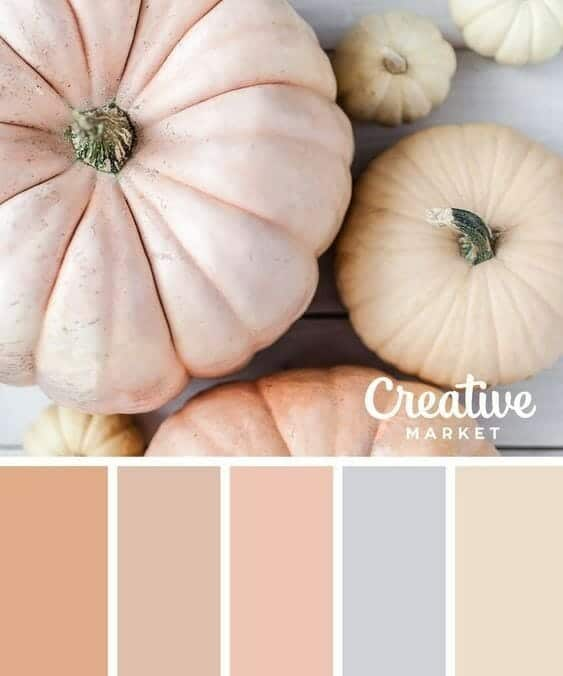 tuesday turn about 17 colorful inspiration pumpkins of different colors with palette