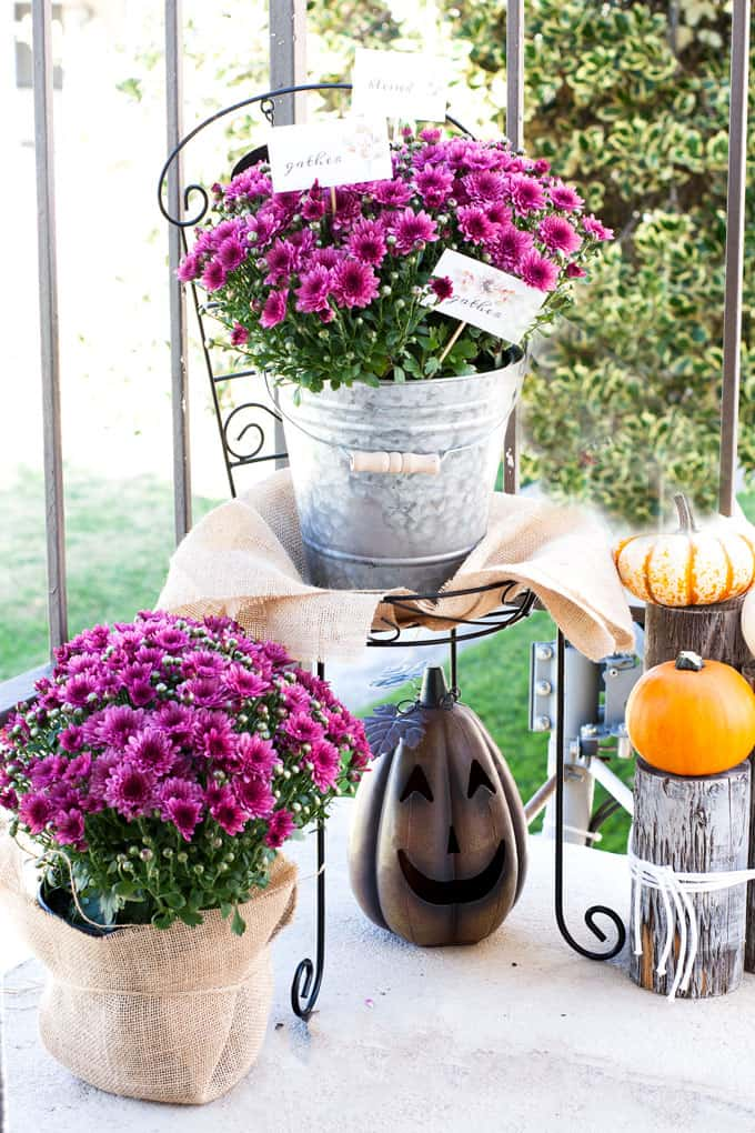simple fall decor using place cards mums and pumpkins on a tiny porch