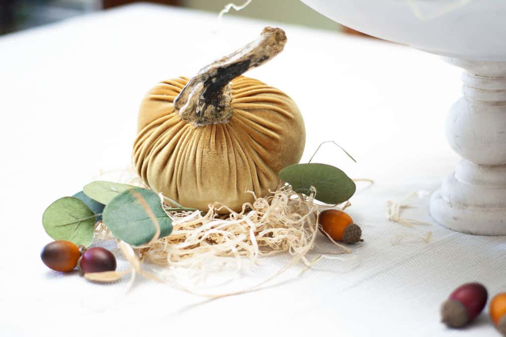 gold velvet pumpkin with real stem on straw with acorns