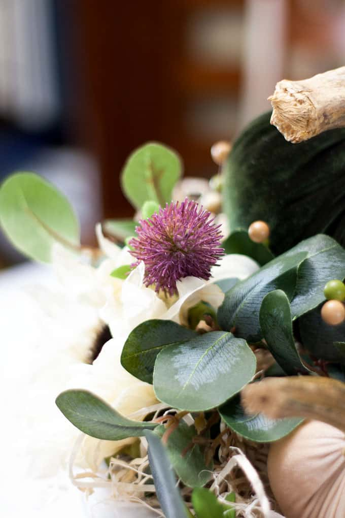 purple thistle with green velvet pumpkin and eucalyptus leaves