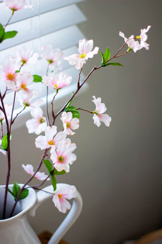 pink spring branches in a white pitcher