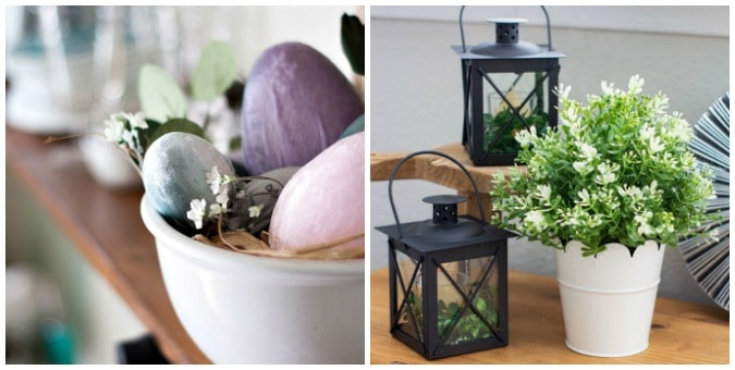 tuesday turn about 37 tiny living velvet eggs in bowl on shelf and black lantern with plant on wood surface