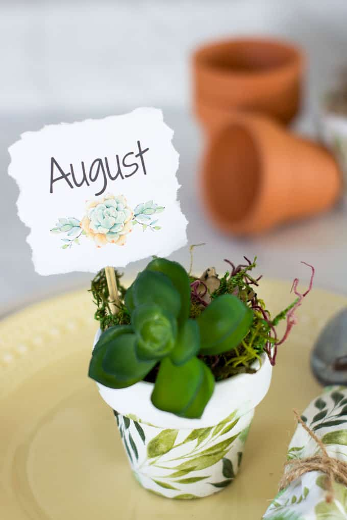 mod podge terra cotta pot with succulent on table setting