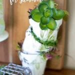 fresh spring vignette with terra cotta mini pots