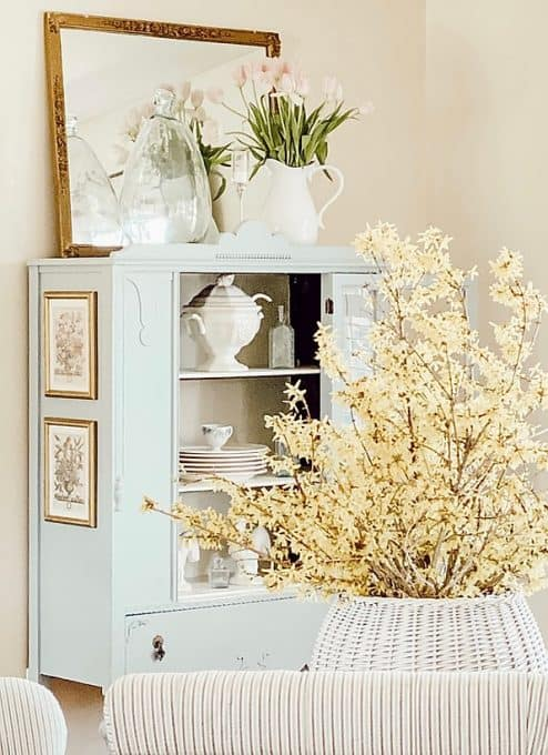 robins egg blue hutch with forsythia branches in foreground