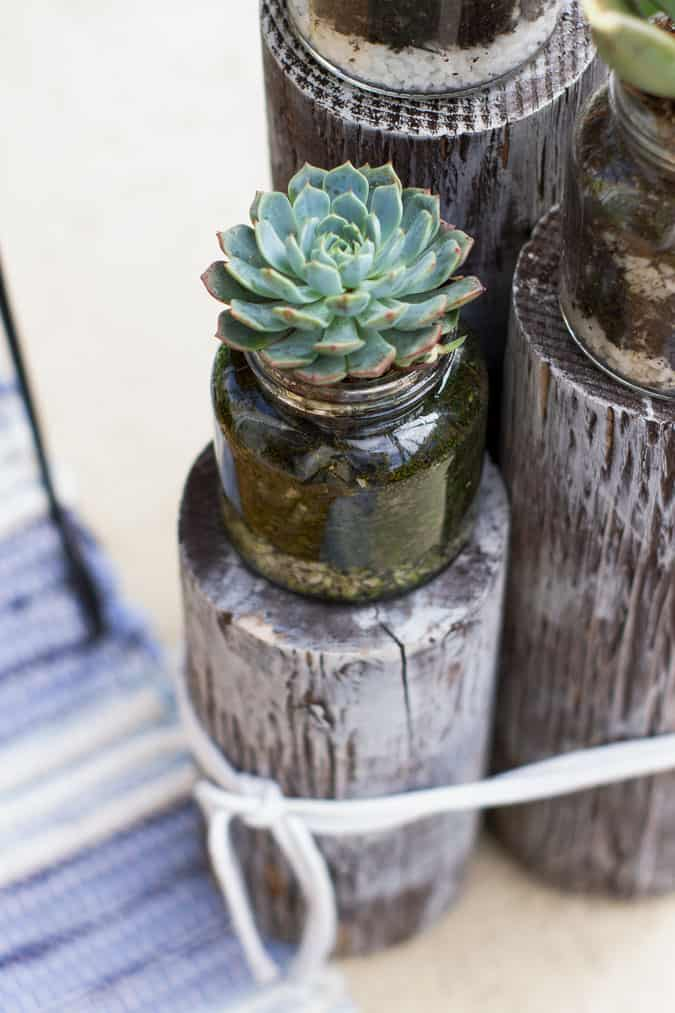 quick and easy summer apartment porch succulent on wood piling with blue rug