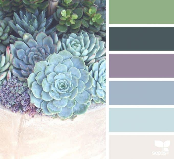 bathroom color schemes succulents in vase and color palette