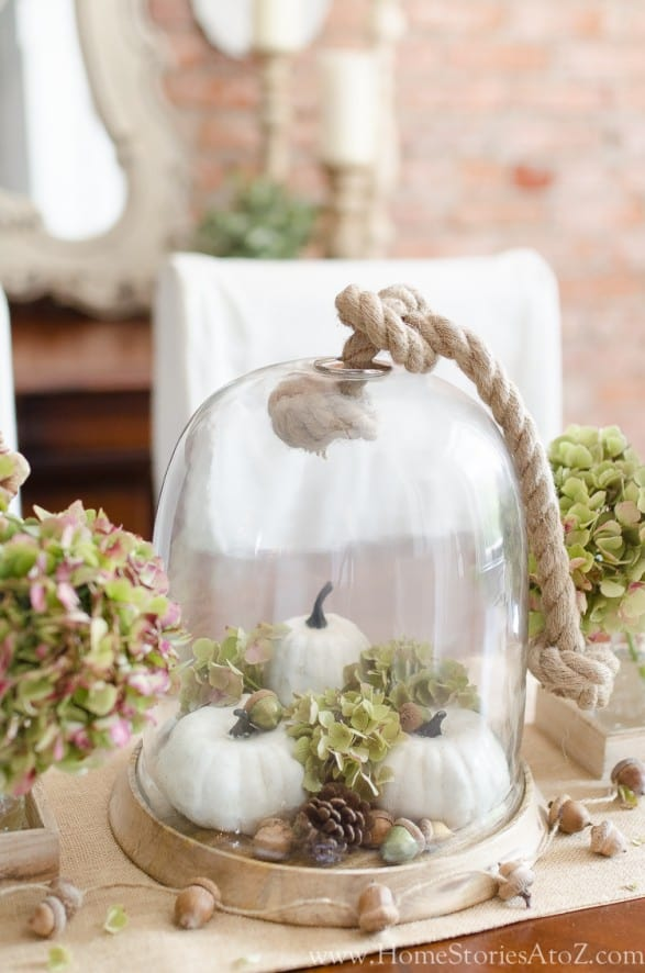 neutral fall cloche with pumpkins and hydrangea on table
