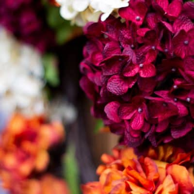 DIY Fall Hydrangea Wreath in 15 Minutes