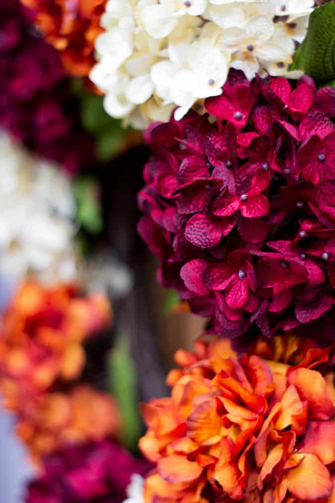 red hydrangea closeup with orange and white florals in background