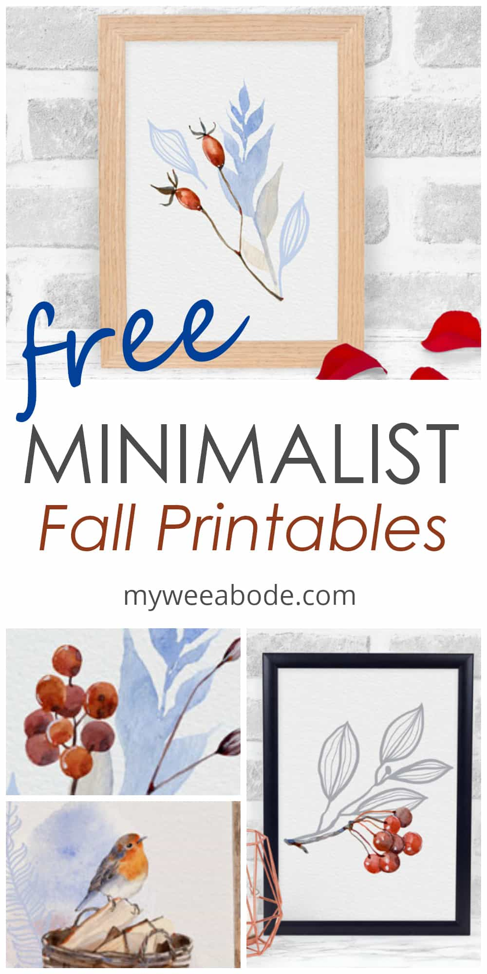 minimalist fall watercolor printables with red pods and leaves in frame and rose petals on white surface