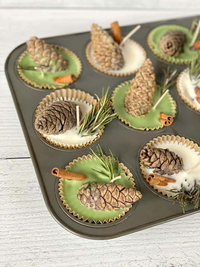 wax with fall elements in a muffin tin