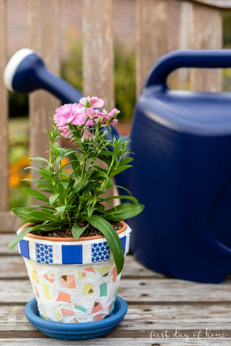 mosaic pot with pink flowers and watering can