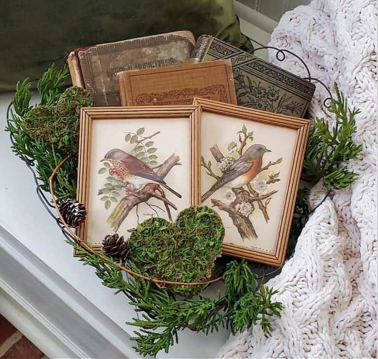 framed bird prints in vignette with natural elements