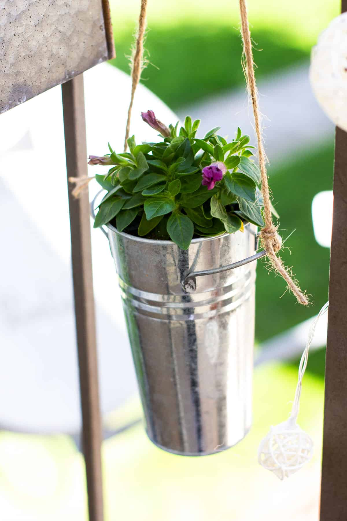 small spring porch with galvanized hanging pots with plants