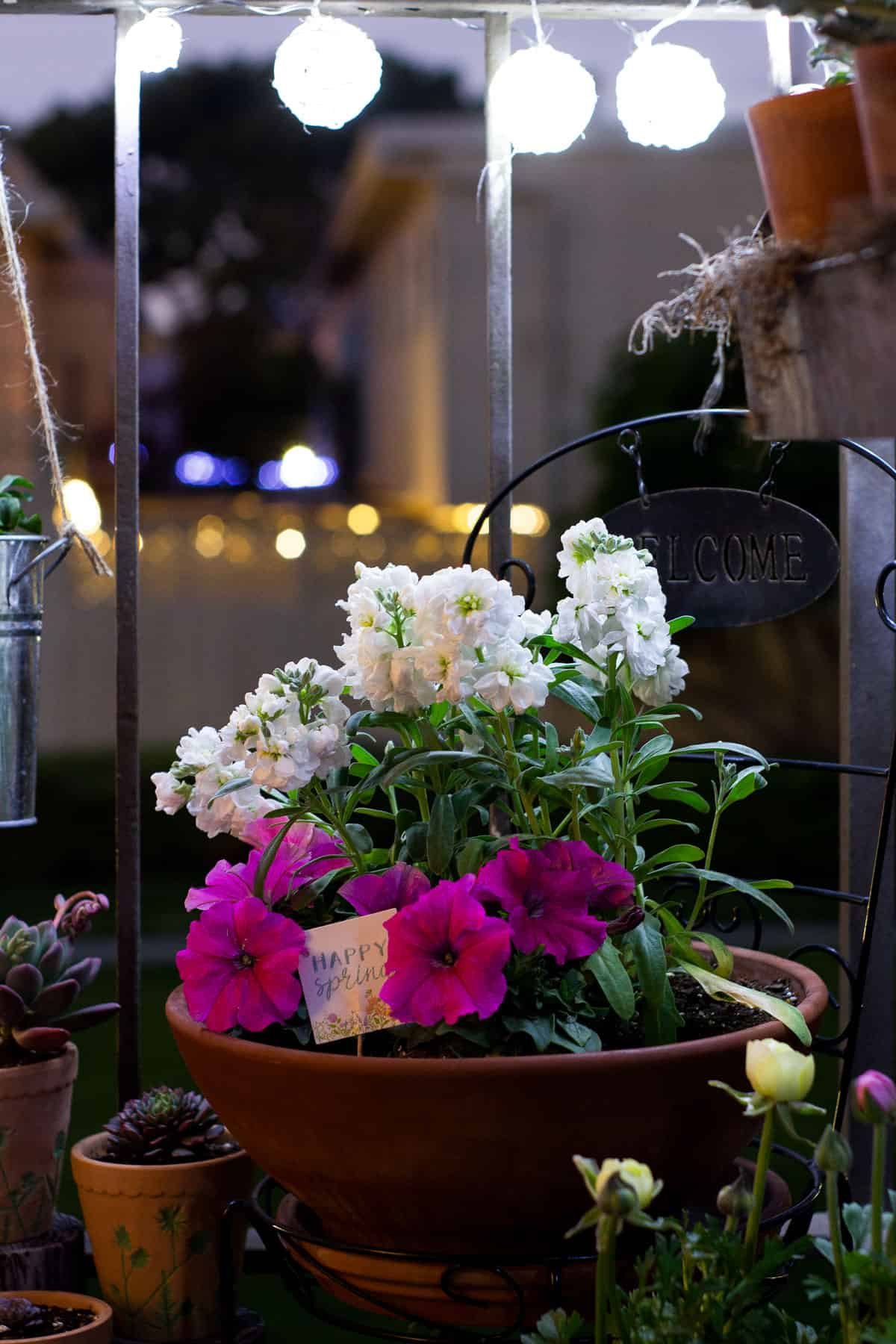 patio with flowers and twinkle lights at night