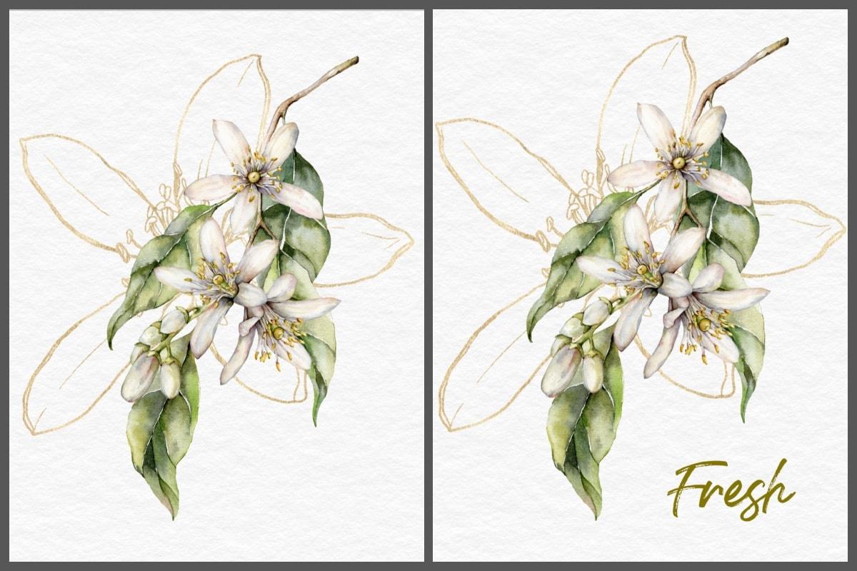 lemon blossom branch collage