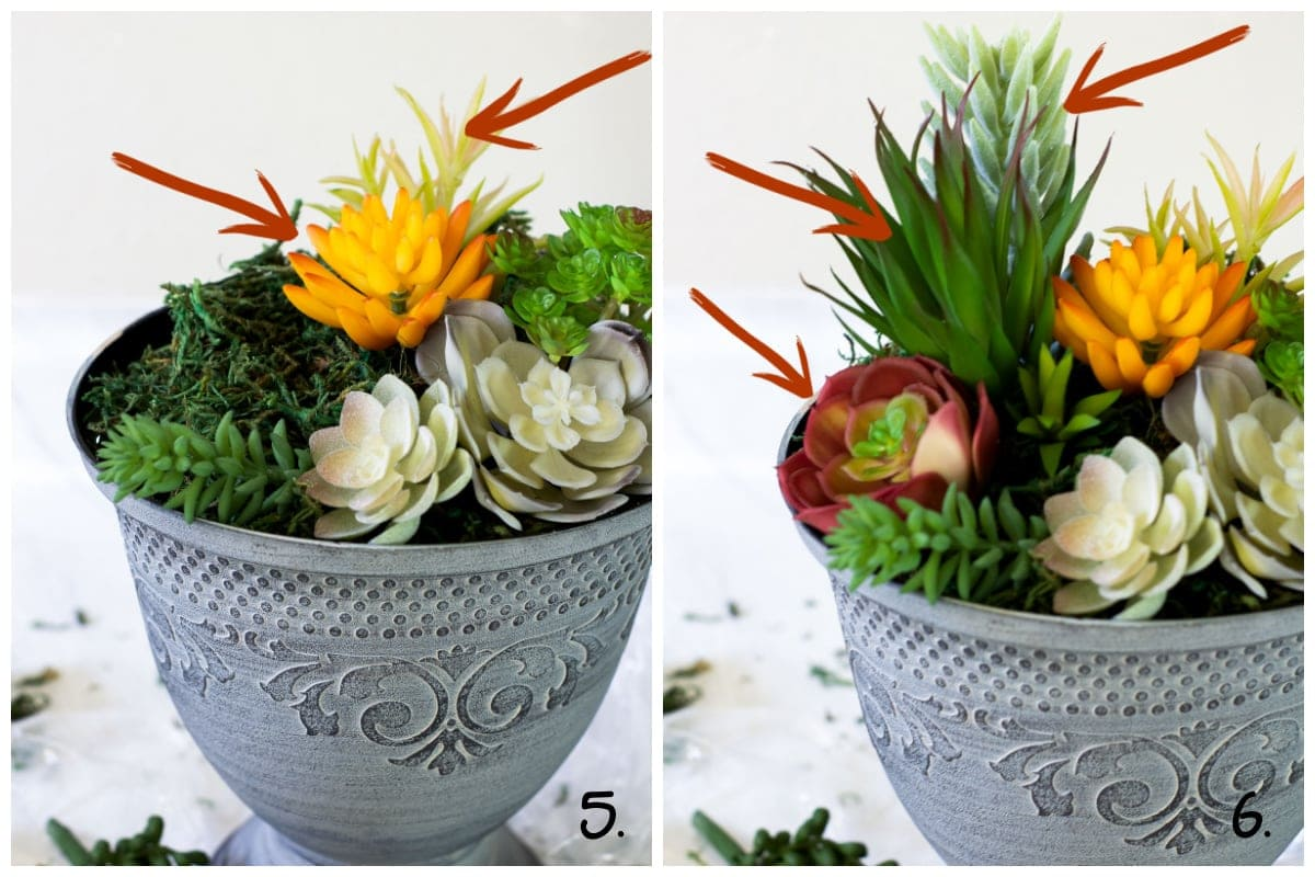 faux succulents in run with arrows