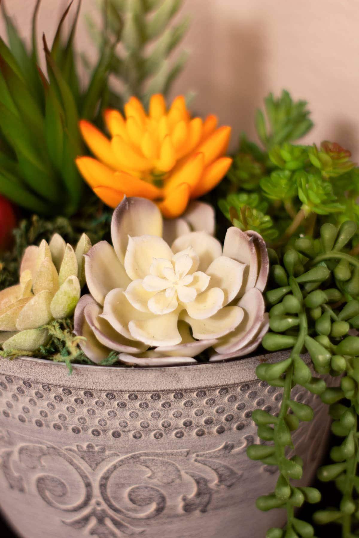 closeup of faux succulents in planter