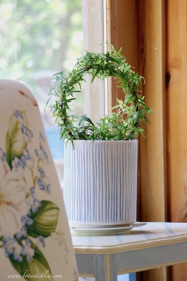 planter with topiary on sidetable
