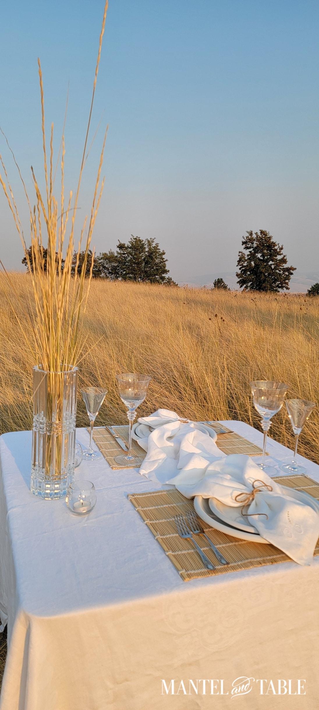 tablescape set in a wheat field
